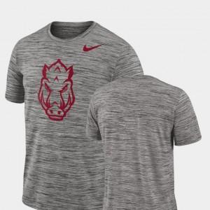 Arkansas Razorbacks T-Shirt 2018 Player Travel Legend Charcoal Performance For Men