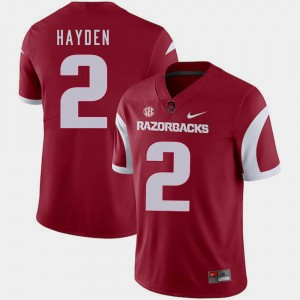 Arkansas Razorbacks Chase Hayden Jersey For Men's Cardinal College Football #2