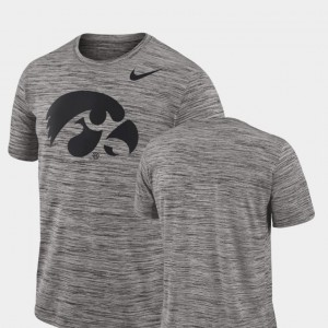 Iowa Hawkeyes T-Shirt Performance Charcoal For Men 2018 Player Travel Legend
